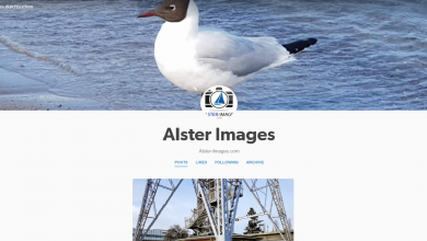 Photo of Alster Images jetzt auf Tumblr