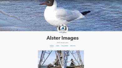 alster images auf tumbr
